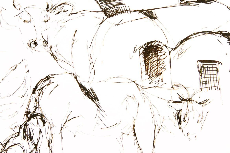 zeichnung-iran2-claudiastrohm-stuttgart