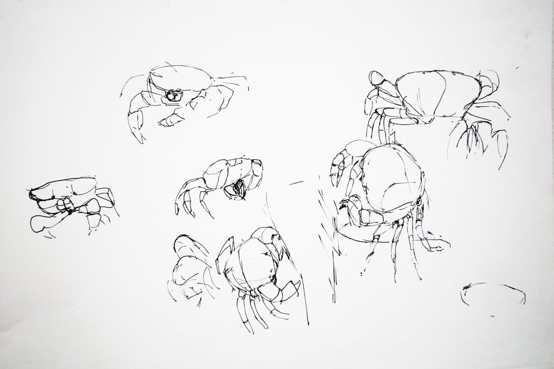 zoo9-claudiastrohm-stuttgart